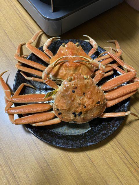 🦀🦀🦀セイコ蟹🦀🦀🦀